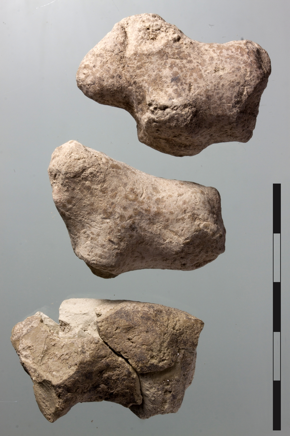 Clay zoomorphic figurines in the form of cattle and goat (from the top: cattle, cattle, goat)